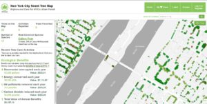 New York City Street Tree Map